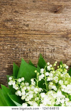 Lilly of valley  fresh flowers close up on wooden table with copy space