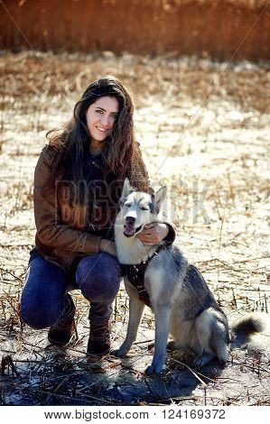 Beautiful woman with husky outdoors.Happy brunette woman with smiling siberian husky dog, sitting in a poppy field on a sunny day, on a walk with dog ** Note: Soft Focus at 100%, best at smaller sizes