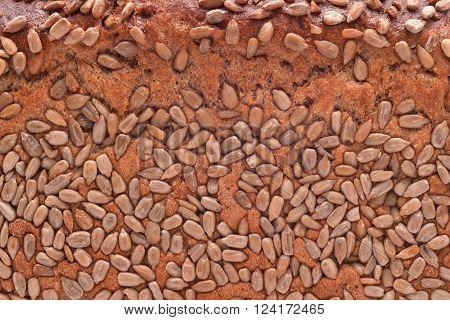 sunflower seed bread crust texture closeup detail