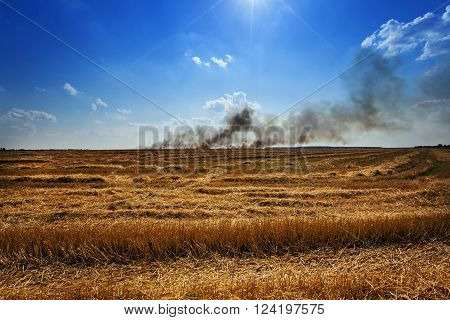 a fire in the agricultural field, where they grow cereals