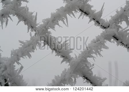Hoarfrost on chain link fence - close-up