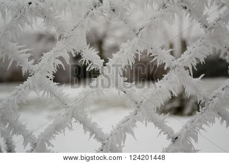 by hoarfrost frozen chainlink fence - abstract