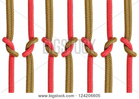Different Ropes Tied  Isolate On White Background