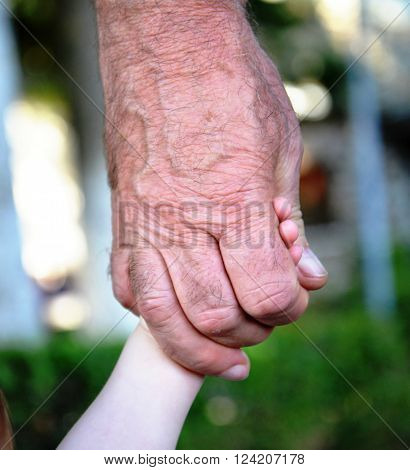 Picture of a Grandpa hold baby hand