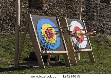 Target archerry and many arrows after shot.