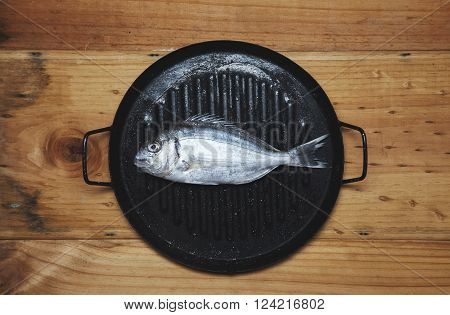 Fresh Wild Sea Bream On Grill Pan Ready To Cook, Isolated On Rustic Wooden Table