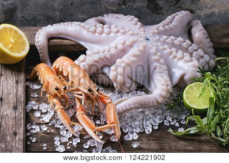 Langoustines And Octopus