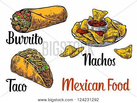 Mexican traditional food set with text message burrito tacos chili tomato nachos. Vector vintage engraved illustration for menu poster web. Isolated on white background