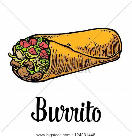 Burrito - mexican traditional food. Vector color vintage engraved illustration for menu poster web. Isolated on white background.