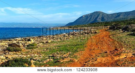 Panorama. Red dirt road on the beach. Cyprus. Akamas