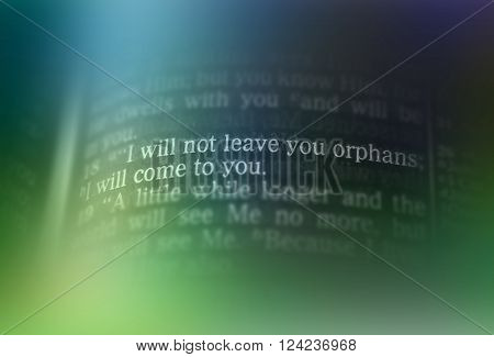 Bible Text - I Will Not Leave You Orphans