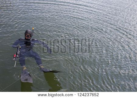 Underwater hunter dives into the sea. Spearfishing.