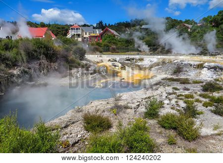 Steaming thermal pools in an aboriginal village in New Zealand