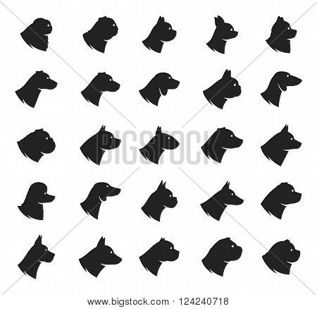 Vector dog breeds icons collection isolated on white. Dog icons collection for cynology pet clinic and pet shop.