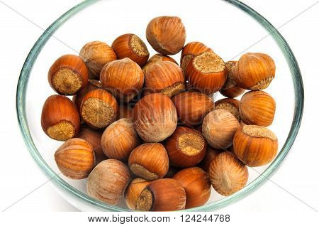 Hazel nuts in shell in glass bowl isolated on white background