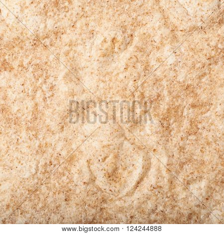 Texture fragment of a wheat tortilla as a background composition