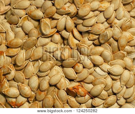 background texture of untreated natural pumpkin seeds