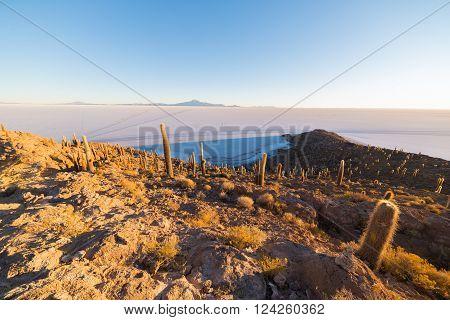 Uyuni Salt Flat On The Bolivian Andes At Sunrise