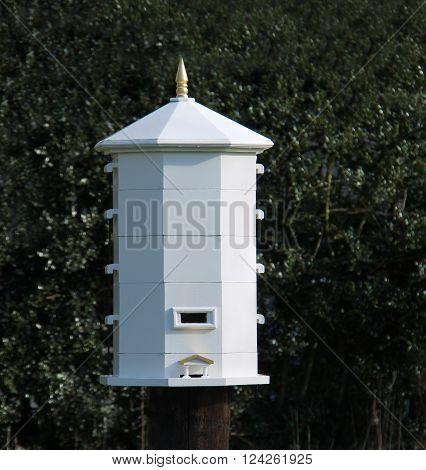 An Octagonal Wooden Stewarton Design Bee Hive.