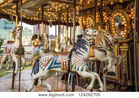 Horses on an old vintage merry go round