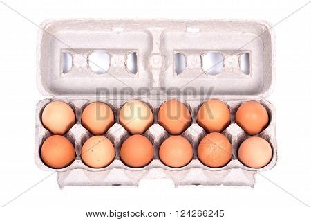 Dozen organic eggs in a box separated on white background