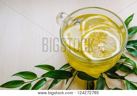 Glass cup of ginger tea with yellow lemon served round frame green leaves ruscus flowers on a light wooden rustic wall background. Still life food and drink healthcare concept top view. Eco style. With spase for text.