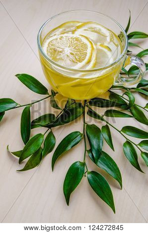 Glass cup of ginger tea with yellow lemon served round frame green leaves ruscus flowers on a light wooden rustic wall background. Still life, food and drink, healthcare concept, top view. Eco style. With spase for text.