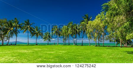 PORT DOUGLAS, AUSTRALIA - 27 MARCH 2016. Rex Smeal Park in Port Douglas with tropical palm trees and beach, Australia