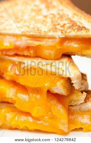 grilled cheese and heirloom tomato sandwiches stock photo