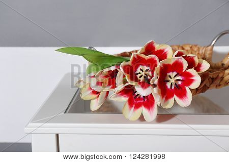 Bouquet of variegated tulips on white table near striped wall, close up