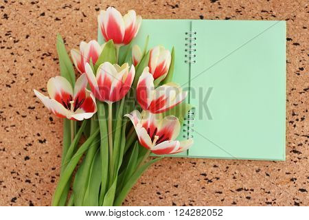 Bouquet of variegated tulips with notebook on pin board