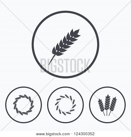 Agricultural icons. Gluten free or No gluten signs. Wreath of Wheat corn symbol. Icons in circles.