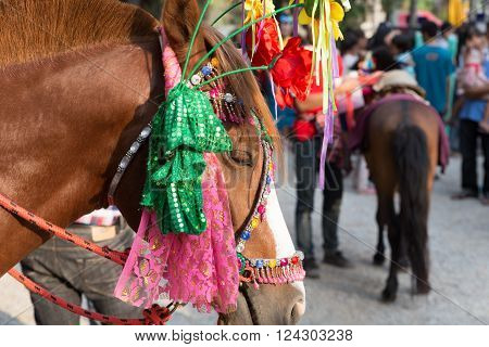People And Horse In Traditional Buddhist Monk Ordination Ceremony
