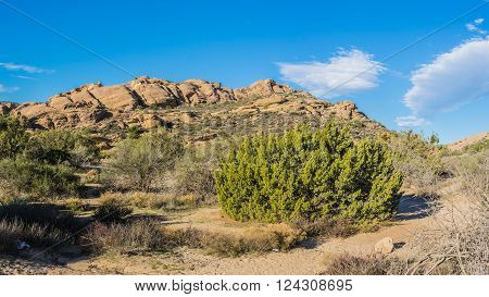 Outdoor nature in the wilderness of Vasquez Rocks State Park near Agua Dulce California.