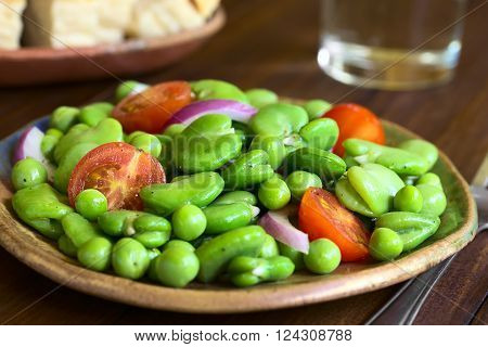 Broad bean (lat. Vicia faba) pea cherry tomato and red onion salad served on plate photographed on dark wood with natural light (Selective Focus Focus one third into the salad)