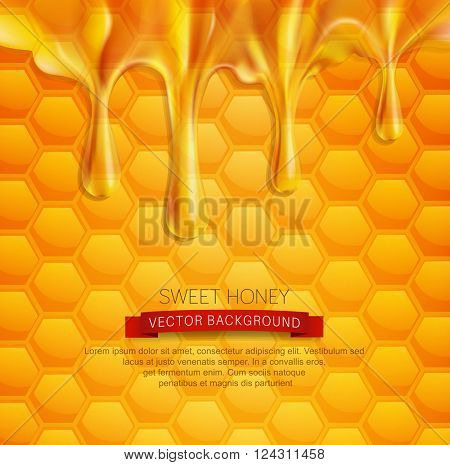vector background with honeycombs and honey