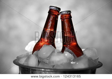Brown glass bottles of beer in ice-pail on grey background