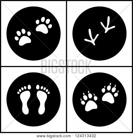 Human and bird feet, cat and dog paws black and white flat icons set, vector collection
