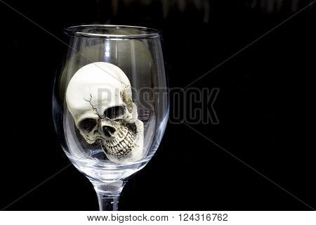 Still Life With Skull In A Glass Of Wine.