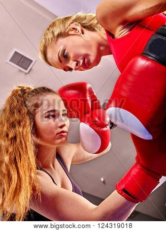 Two  women boxer wearing red  gloves to box in ring. Low point shooting.