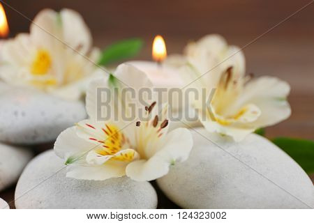 Spa still life with stones, flowers and candlelight closeup