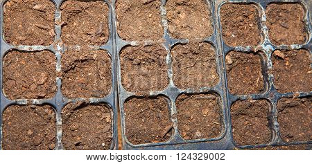agricultural isolated boxes with humus for seedings