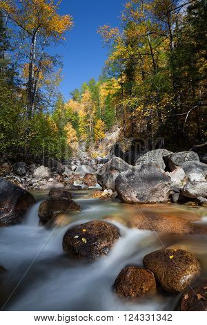 Crystal clear water of river among fall woods in mountain. Long exposure