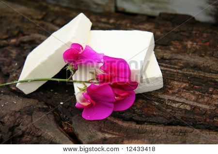 Home Made White Soap With Flower