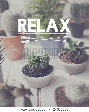 Relaxation Relax Chill Out Peace Resting Serenity Concept