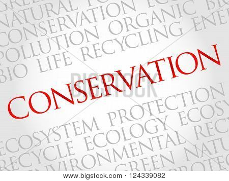 Conservation word cloud environmental concept, presentation background
