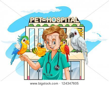 Vet and parrots at the hospital illustration