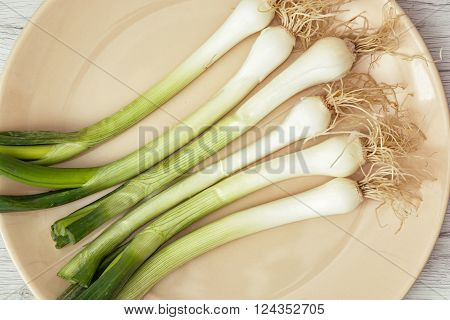 Scallions on the plate. Food theme. Healthy food. Close up photo.