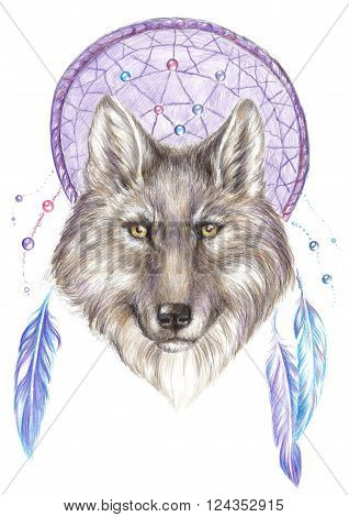 Colored pencil drawing wolf on the background dreamcatcher with feathers