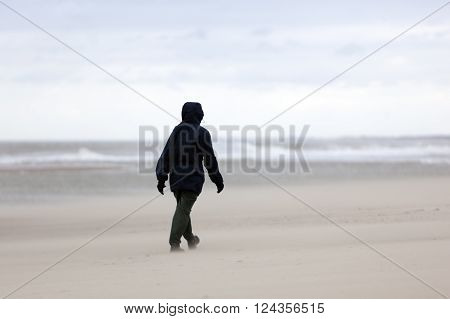 person strolls on stormy north sea beach near scheveningen in holland with cloudy sky
